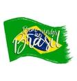 National Brazil flag vector image