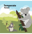 eco style life forest wildlife vector image