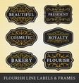 Set of flourish calligraphy frames and labels vector image vector image