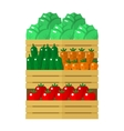 Wooden box with vegetables vector image