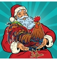 Santa Claus holds in his hands the cock vector image