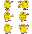little chicken collection vector image vector image