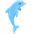 Dolphin isolated vector image