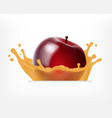 red apple with juice splash vector image