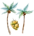 Watercolor palms vector image