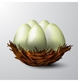 white nest isolated vector image