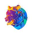 bear icon abstract vector image