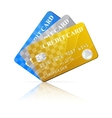 Credit Cards Set vector image