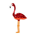 Red flamingo vector image