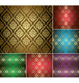 beautiful vintage patterns with gold ornament vector image