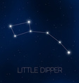 Little Dipper in night sky vector image