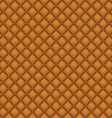 Seamless Brown Leather Upholstery vector image