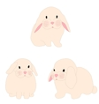 cute rabbit set for baby fashion vector image