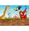 Animals and wall vector image vector image