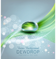 drop of dew and reflection sheet in dew drop vector image vector image