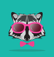images of raccoon and glasses vector image