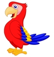 Cute parrot bird cartoon vector image vector image