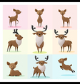 Set of Deer family vector image