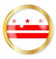 washington dc flag button vector image
