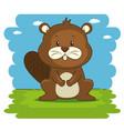 cute adorable beaver animal cartoon vector image