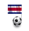Soccer Balls or Footballs with flag of Costa Rica vector image vector image