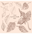 Set of hand-drawn doodle autumn forest leaves vector image