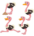 Cartoon funny ostrich collection set vector image vector image