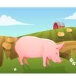 pig on farm vector image