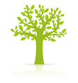 green eco tree vector image