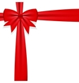 Gift bow with ribbon vector image