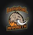 Basketball tournament professional logo vector image