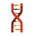 Dna icon Science and biology design vector image