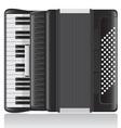accordion 01 vector image