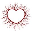 heart in veins nimbus vector image