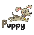 Little dog or puppy for ABC Alphabet P vector image