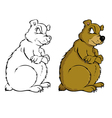 bear coloring book vector image vector image