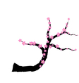 Pink plum blossom vector image
