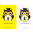 owl knowledge vector image