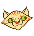 cartoon smiling tabby cat vector image