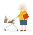 Grandmother is Shopping Old woman leisure time vector image