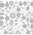 Fruit a background vector image vector image
