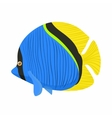 Surgeon fish icon cartoon style vector image