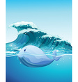 Dolphine swimming under the sea vector image