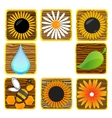 nature and eco creative symbols set vector image vector image
