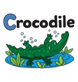 Little crocodile or alligator for ABC Alphabet C vector image