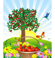 Apple basket vector image