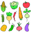 doodle of vegetable stock collection vector image