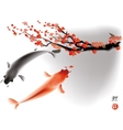 Koi carps and sacura branch vector image