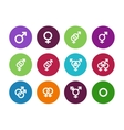 Gender identities circle icons on white background vector image