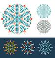Snowflakes winter set vector image vector image